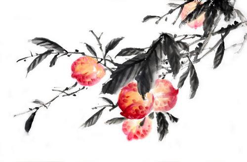 Пионы: цветы любви и романтики по фен-шуй