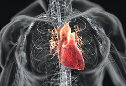 Психосоматика: не принимайте все близко к сердцу