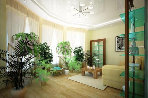 Как можно использовать цветотерапию в гостиной