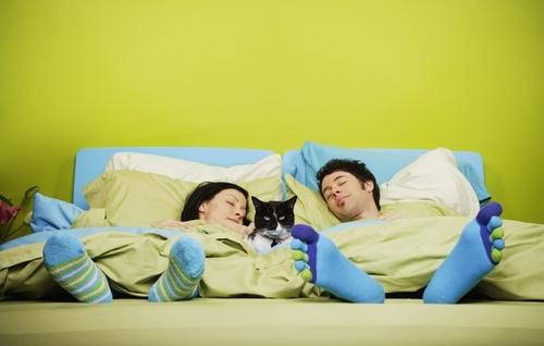Какого цвета вам нужно выбрать постельное белье, чтобы хорошо высыпаться