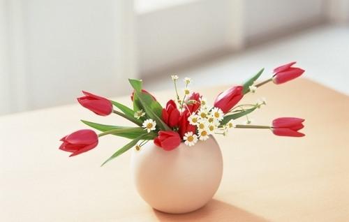 5 причин подарить цветы другому