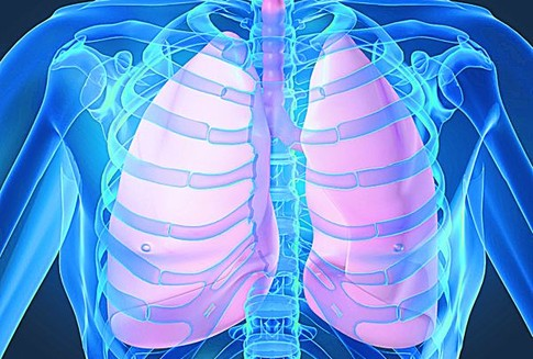 Лечебно-диагностические аспекты борьбы с туберкулезом